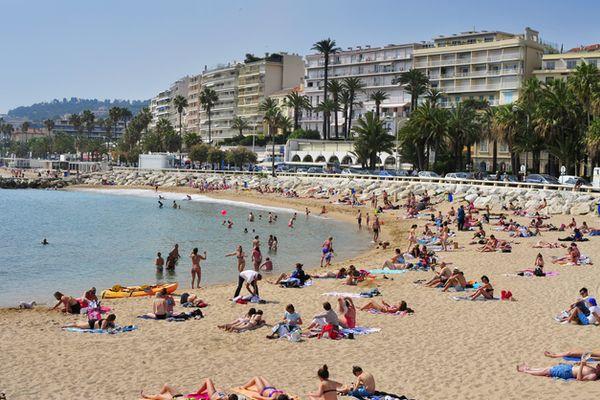 Residence Cannes Palais à Cannes - Photo 2